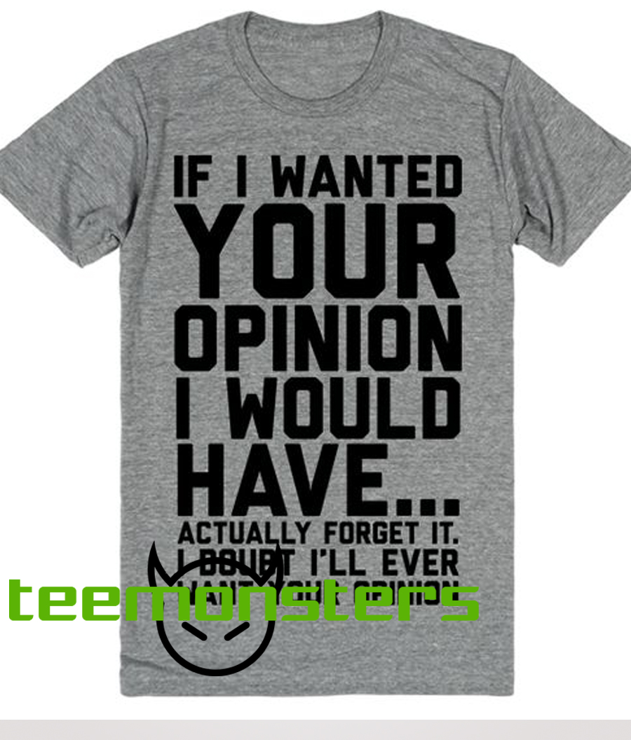 If I wanted your opinion I would have T-shirt